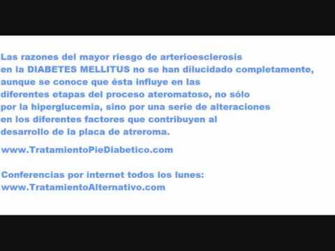 La diabetes tipo 1 etiología