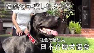 障がいのあるお子さんのいるご家族に紹介したキャリアチェンジ犬も登場します。