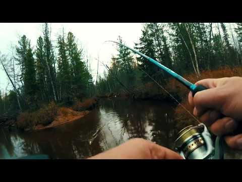 Рыбалка на Ямале 2018