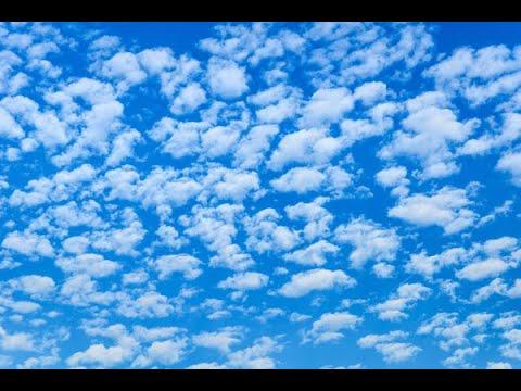 Ситцевое небо...  стихи в соавторстве с В. Крыловым