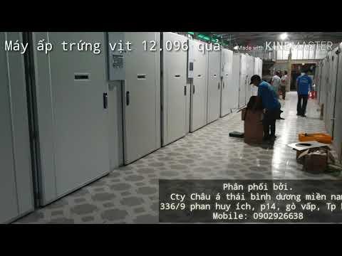 Máy ấp trứng gà Thanh Đảo 19.200 quả