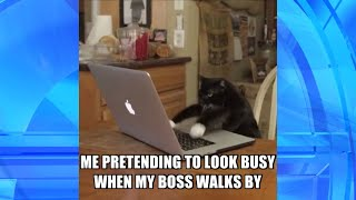Pretending to Do Work in 'Thank GIF It's Friday'