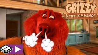 Grizzy and the Lemmings | Red HOT | Boomerang Africa