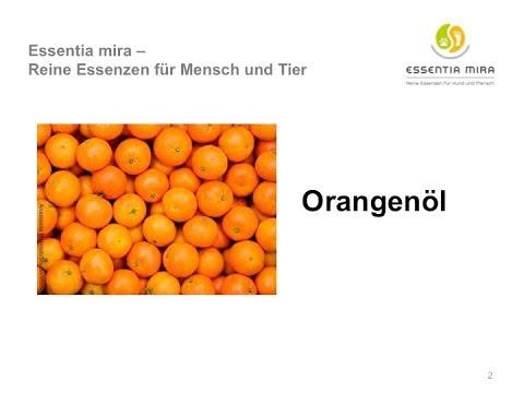Orangenöl - Entdecken Sie die Vielfalt dieses herrlichen ätherischen Öls!