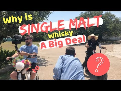 What Is Single Malt Whisky + Why Is It So Popular???