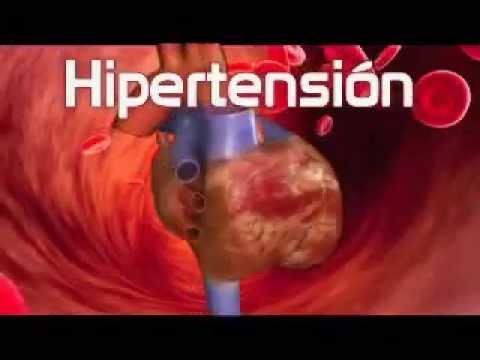La hipertensión, la infusión de valeriana