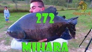 Programa Fishingtur na Tv 272 - Pesqueiro Mihara