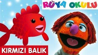 kırmızı balık   çocuk şarkısı  çizgi film şarkısı türkçe  rüya okulu