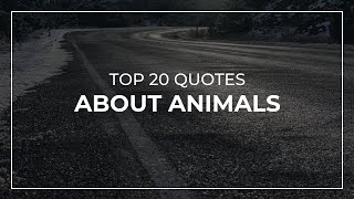 TOP 20 Quotes about Animals | Daily Quotes | Motivational Quotes | Trendy Quotes