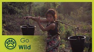Laos Wonderland (full documentary) - The Secrets of Nature
