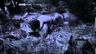 Documentary Why America Lost The Vietnam War Documentaries Full