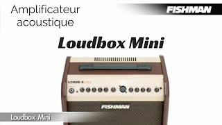 Fishman Loudbox Mini - Video