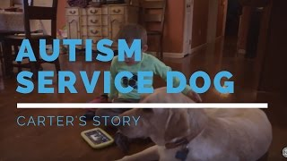 Autism Service Dog Feature: Carter's Story