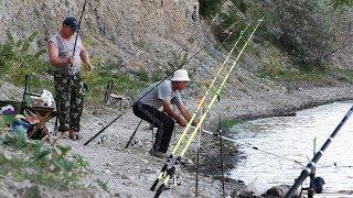 Ловля карпа в дону волгоградская область