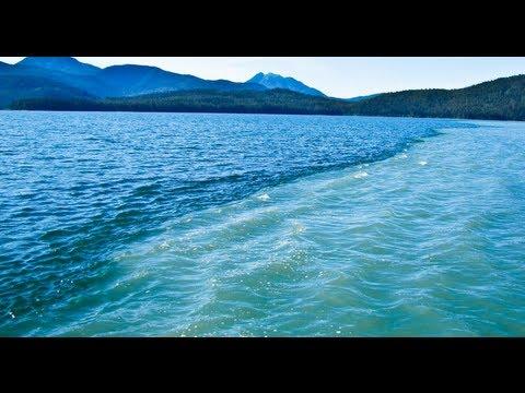 Freshwater & Saltwater Dividing Line