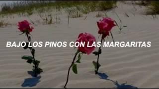 13 BEACHES lana del rey [ subtitulada español]