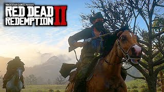 "Red Dead Redemption 2 - News Update! Fair Value Microtransactions & RDR2 Is ""Scared"" of Competition!"
