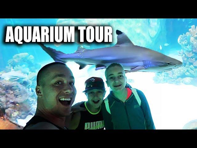 Their FIRST aquarium tour!