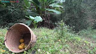 Primitive Life - Ethnic girl picking natural fruits meets forest people: Eat delicious fruits