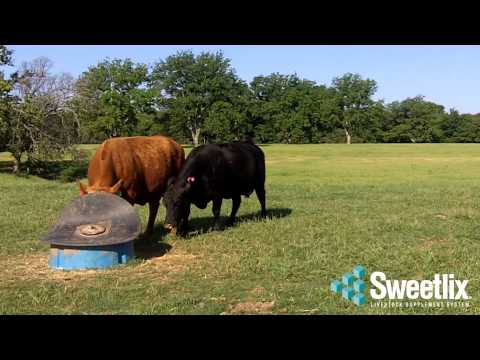 SWEETLIX Mineral Testimonial - Buckhorn Creek Ranch