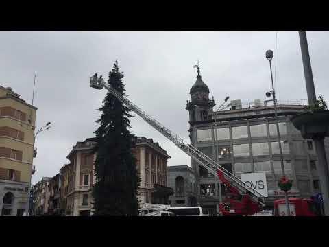 Natale 2018: le luci dell'albero di Natale in piazza sono già pronte
