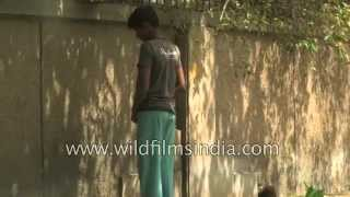 Roadside Peeing in India - when will we ever learn?