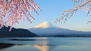 Tokyo Japan - Mt Fuji, Lake Ashi and Bullet Train Day Trip