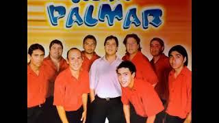 Los Del Palmar   Te Doy Mi Corazón