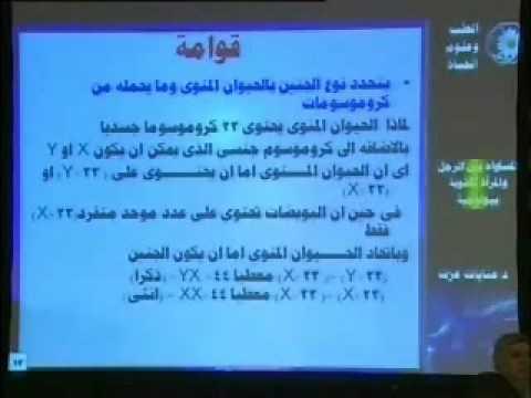 المساواة بين الرجل والمرأة أكذوبة بيولوجية الجزء الأول (1) - الإعجاز العلمي فى القرآن الكريم