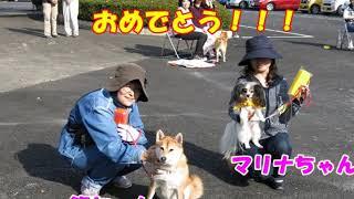動画サムネイル:10月29日にワンパク同窓会を開催しました!!