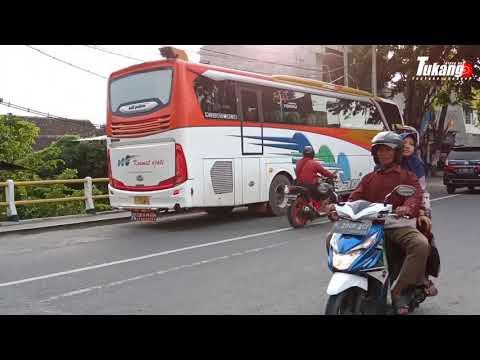 Beli tiket sekalian absen bus apa saja yang hadir_Pesona bus Indonesia