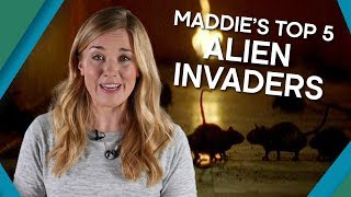 Maddie's Top 5 Alien Invaders - Earth Unplugged...