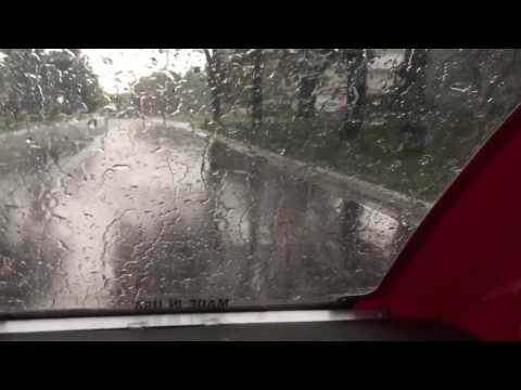 ELF in the Rain #1