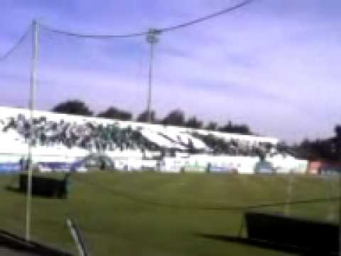 Download TIFO GREEN GHOST.3gp HD Mp4 3GP Video and MP3