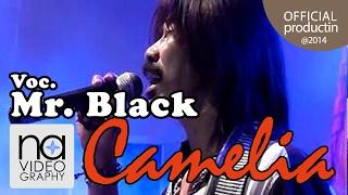 Dia Lelaki Aku Lelaki Mr BlacK Camelia @2014