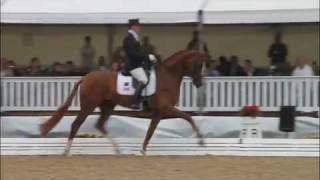 video of Woodlander Farouche