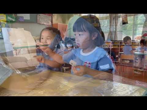 Gakkohojinhattorigakuinhikari Kindergarten