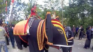 Sedyo Elephant Art Unites The Sawo Ponorogo Ketro # SENI GAJAH SEDYO MANUNGGAL KETRO SAWOO PONOROGO