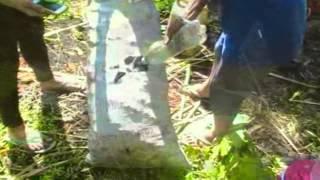 Liwanag sa Dilim - Documentary 2014