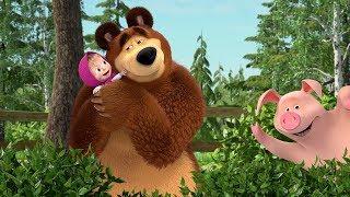 LIVE!👍Masza i Niedźwiedź 💥🤩TOP najlepszych odcinków 🤩💥 Śmieszne bajki dla dzieci