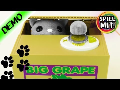 KATZE KLAUT UNSER GELD! Witzige & süße Spardose - Katze in der Box! Spiel mit mir Kinderspielzeug