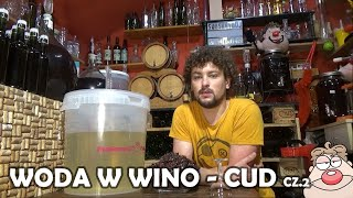 Jak zmienić WODĘ w WINO? cz.2 + HIBISKUS na zimno + Wino z Kaki ( butelkowanie)