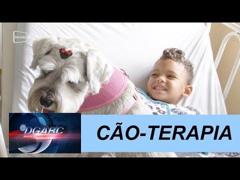 Terapia com cães auxilia tratamento de crianças internadas no CHM
