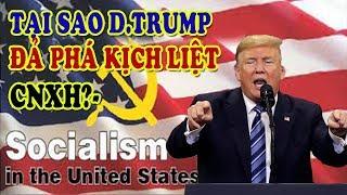 Chủ Nghĩa Xã Hội ở Mỹ   Tại Sao Donald Trump đả Phá Kịch Liệt CNXH?