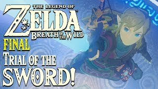 legend of zelda breath of the wild fully upgraded master