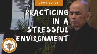 Practicing in a Stressful Environment | Dharma Talk by Thich Nhat Hanh, 2004.02.08
