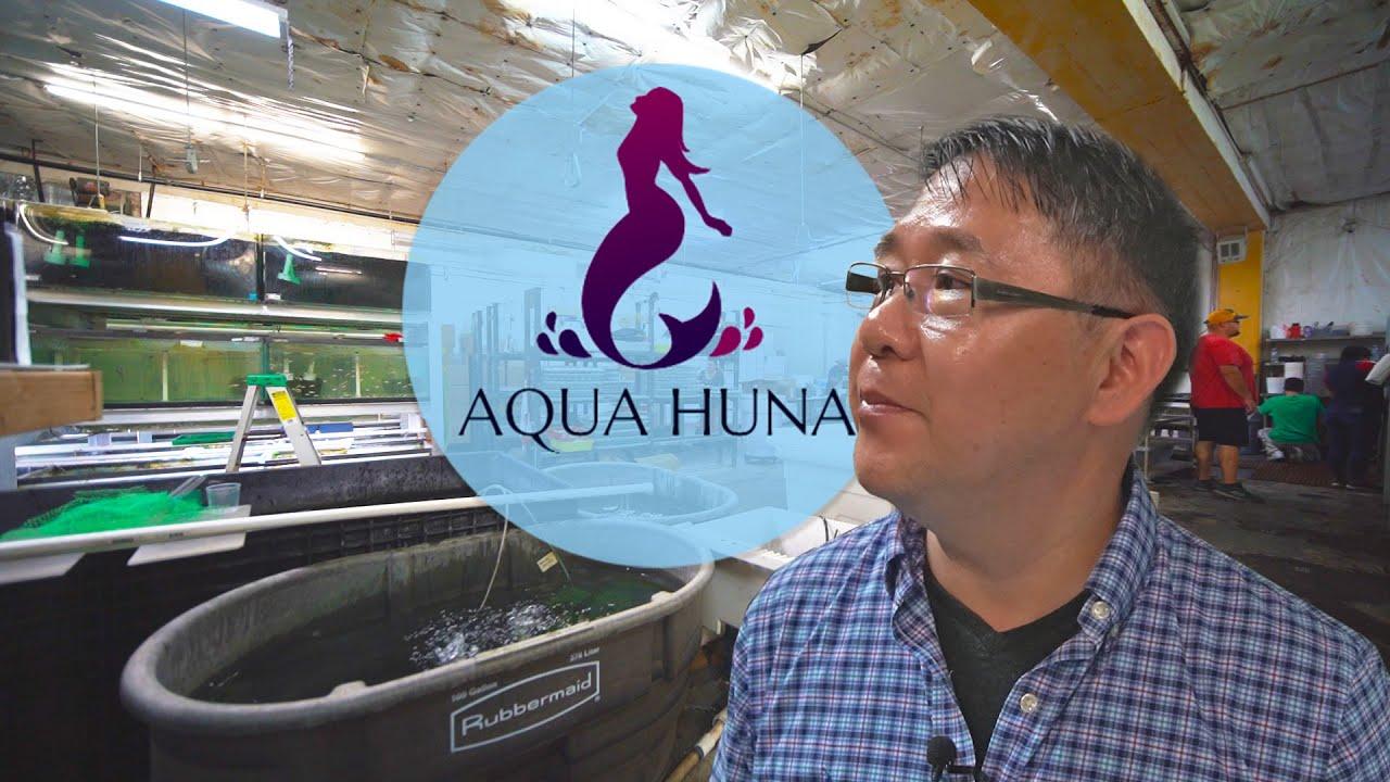 Aqua Huna video still