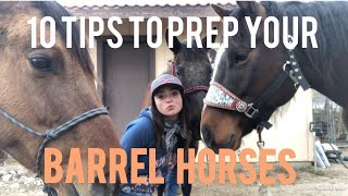10 Tips To Prep Your Barrel Horse For The Season!! + Fave Horsey Products | Hannah Beth Tems