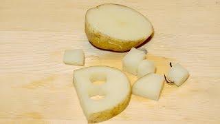 Сколько варить картошку для ловли карпа