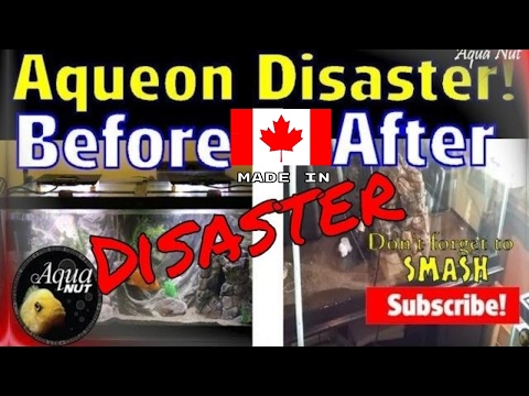 New Petsmart TopFin by Aqueon Aquarium Fish Tank Failure Disaster Pt 3
